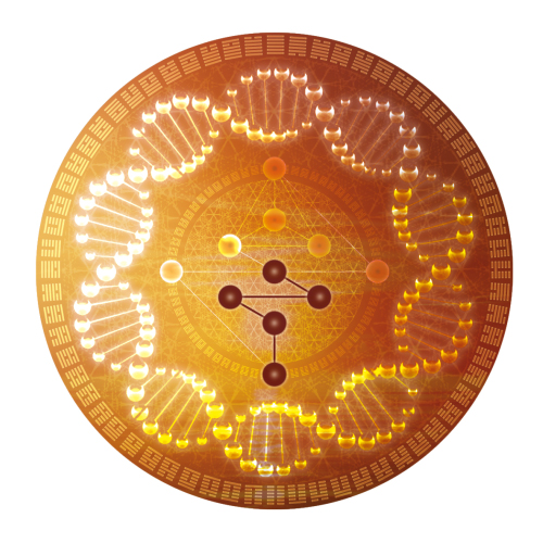 venus-sequence-gold-mandala-version-0000000 2.jpg